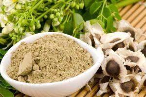 moringa oleifera e sementes de moringa