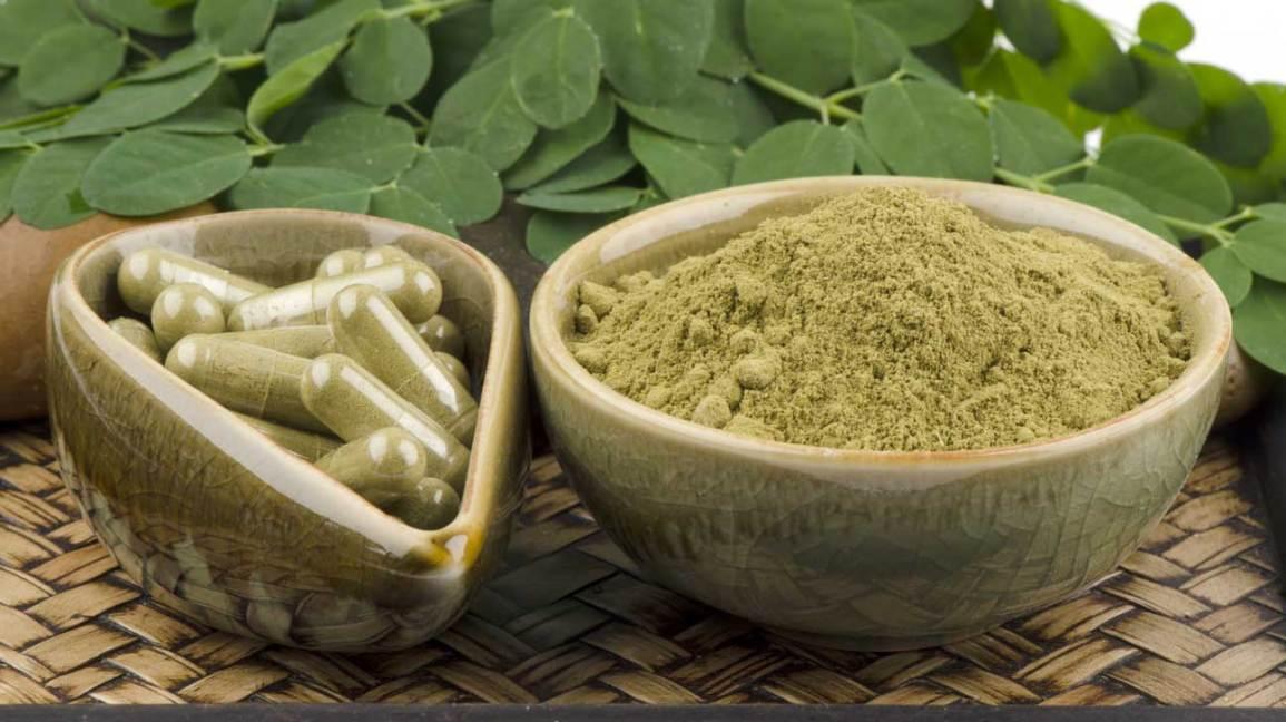 moringa oleifera em capsulas