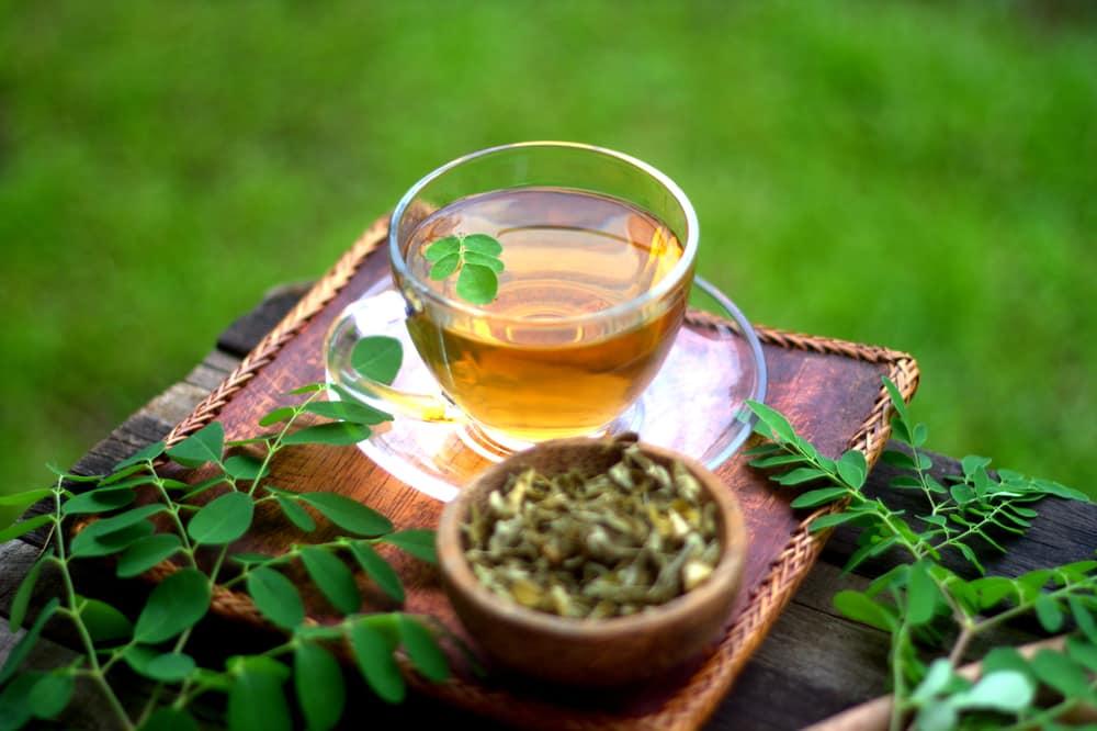 Chá de Moringa Oleífera