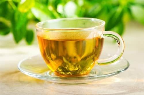 Moringa Oleífera, chá da vida