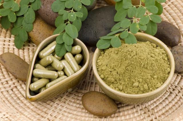 moringa oleifera receitas